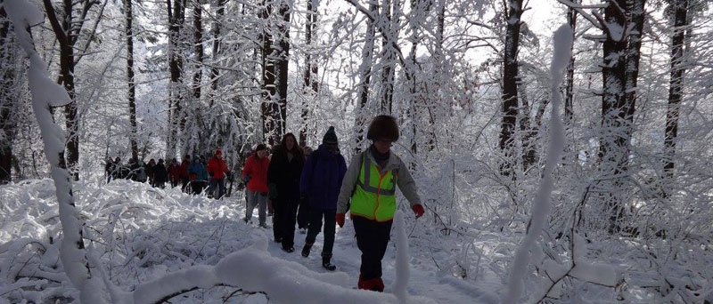 Hike Beautiful Billerica - Feb 6, 2016 with Marlie Henderson