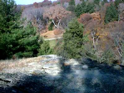 View from Hemlock Hill (Arnold Arboretum)
