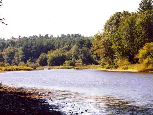 Sudbury River (Concord Conservation Land)