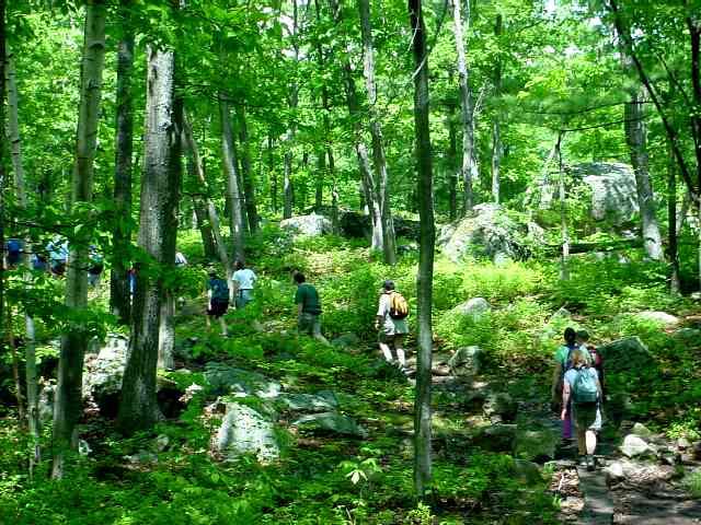 Jackson Path (Lynn Woods)